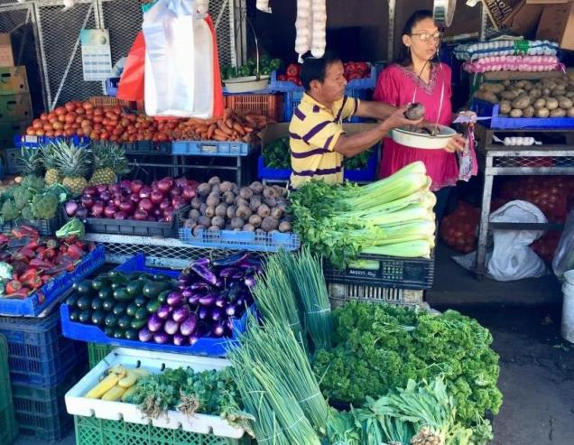26 marché Panama City