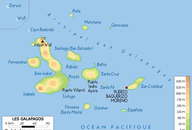 4 carte Galapagos