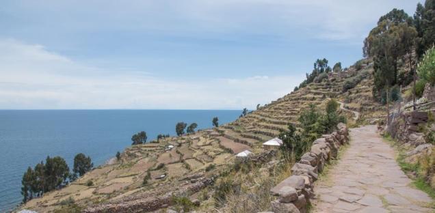 31 Terrasses agricoles Taquile