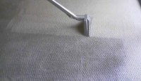 Calgary Steam Carpet Cleaning  The Best Way to Clean Your ...