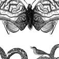 Humanism Versus Naturalism (detail 02)