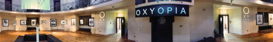 Benjamin Oliver - OXYOPIA - The Ashton Memorial - 17th May 2014 - Photo Valentin Oancea
