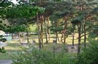 与田切公園 (オートキャンプ・プール・公園) 与田切川のほとりに広がるリゾートパーク。キャンプ場・テニスコート・屋外プール・親水広場・川遊び・バーベキューなど、自然いっぱいのアウトドア体験ができます。 ≫飯島町与田切公園 ≫飯島町観光協会