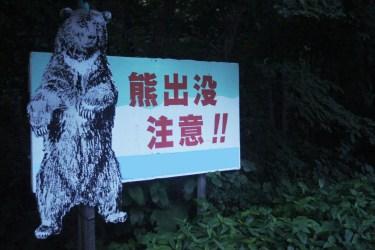 熊が冬眠する場所とは?クマがいそうなところには近づかない