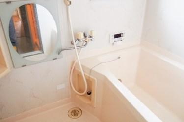 蛇口シャワーの掃除方法とは?定期的に洗いましょう