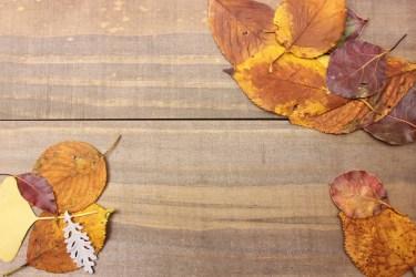 落ち葉の掃除、砂利の上の場合のおすすめな道具と掃除のポイント