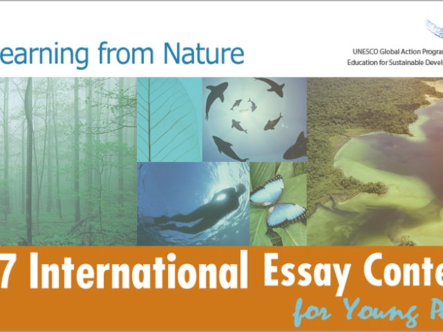 Gio peace foundation international essay contest for young people