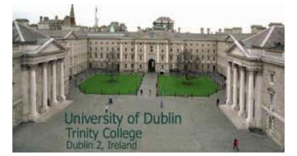 Professor of Electronic Engineering in University of Ireland