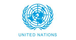 Project Manager at UN Career, Sierra Leone