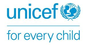 Emergency Manager (Risk Analysis) Job in UNICEF