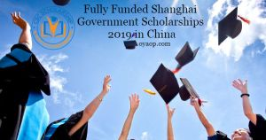 Shanghai Government Scholarships