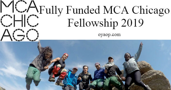 MCA Chicago Fellowship