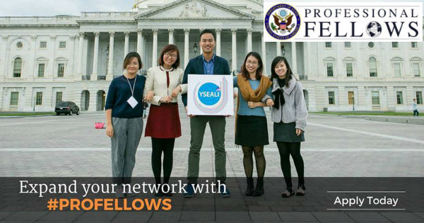 Professional Fellows Program