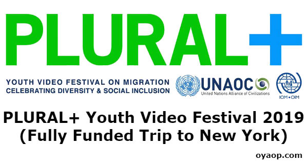 PLURAL+ Youth Video Festival 2019 (Fully Funded Trip to New York)