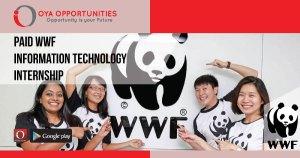 Paid WWF Information Technology Internship