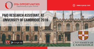 Paid Research Assistant, at University of Cambridge 2019