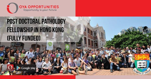Post Doctoral Pathology Fellowship in Hong Kong (Fully Funded)