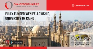 Fully Funded WFN Fellowship, University of Cairo
