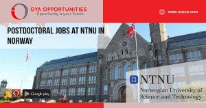 Postdoctoral Jobs at NTNU in Norway