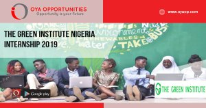 The Green Institute Nigeria Internship 2019