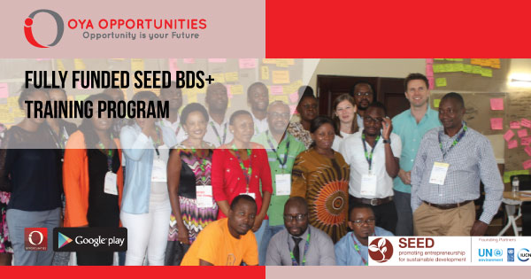 Fully Funded SEED BDS+ Training Program