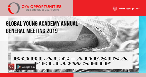 Borlaug-Adesina Fellowship Program 2019