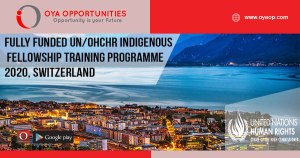 Fully Funded UN/OHCHR Indigenous Fellowship Training Programme 2020, Switzerland