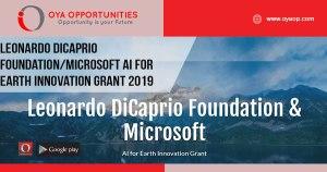 Leonardo DiCaprio Foundation/Microsoft AI for Earth Innovation Grant 2019