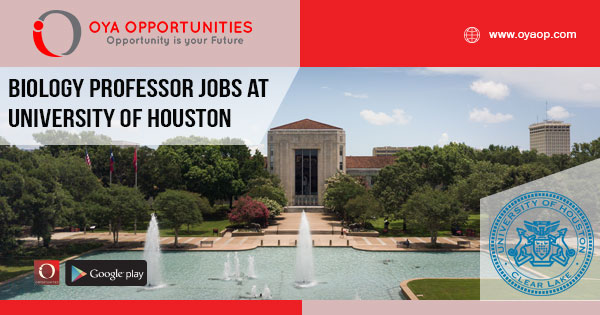 Professor jobs at University of Houston