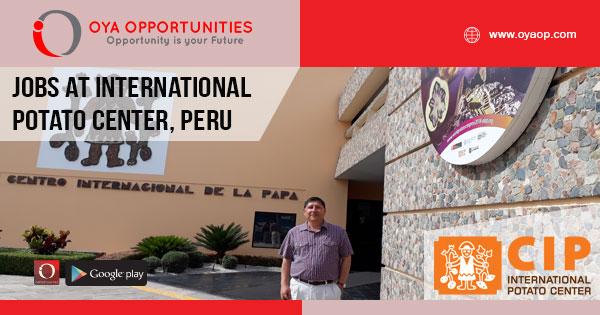 Jobs at International Potato Center, Peru