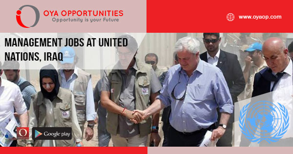 Management jobs at UN, Iraq