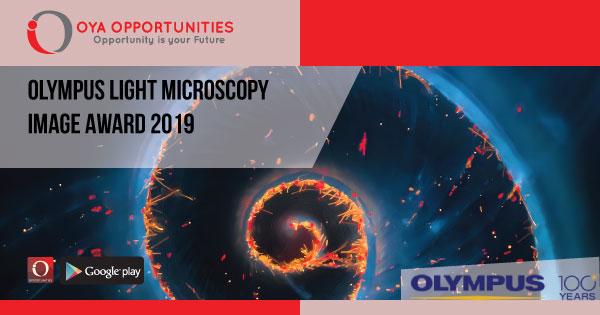 Olympus Light Microscopy Image Award 2019
