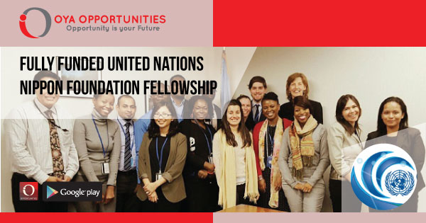 Fully Funded United Nations Nippon Foundation Fellowship