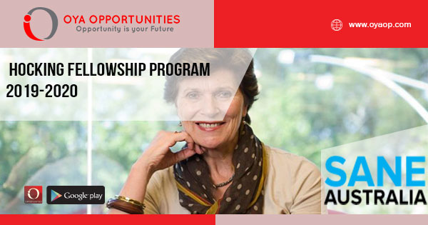 Hocking Fellowship Program 2019-2020