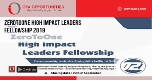 ZeroToOne High Impact Leaders Fellowship 2019