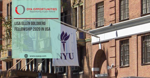 Lisa Ellen Goldberg Fellowship 2020 in USA