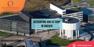 Accounting Jobs at Sony in Sweden