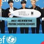 UNICEF Jobs in New York Position: Executive Associate