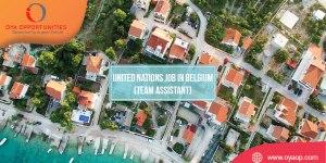 United Nations Job in Belgium (Team Assistant)