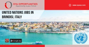 United Nations Jobs in Brindisi, Italy
