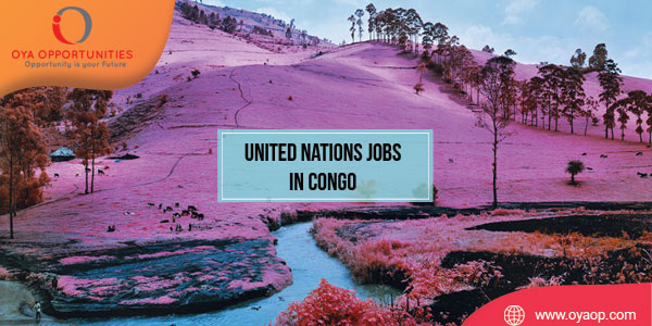 United Nations Jobs in Congo
