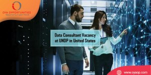 Data Consultant Vacancy at UNDP in United States