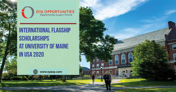 International Flagship Scholarship