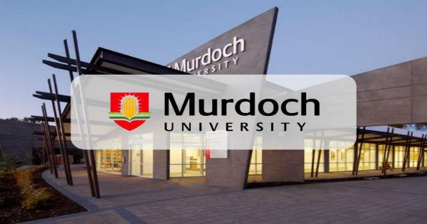 scholarships for international students at Murdoch University
