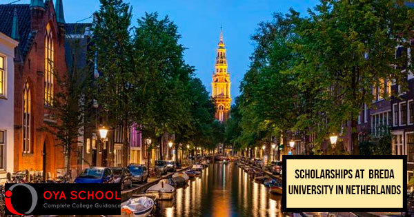 Scholarships in the Netherlands 2020