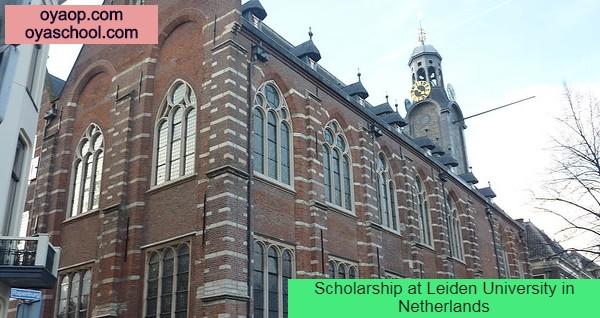 Scholarship at Leiden University in Netherlands