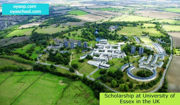 Scholarship at University of Essex in the UK