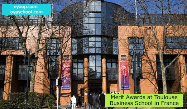 Merit Awards at Toulouse Business School in France