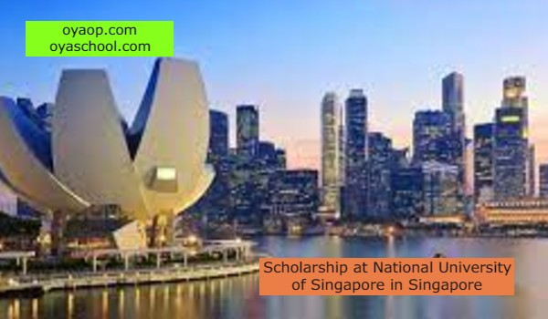 Scholarship at National University of Singapore in Singapore
