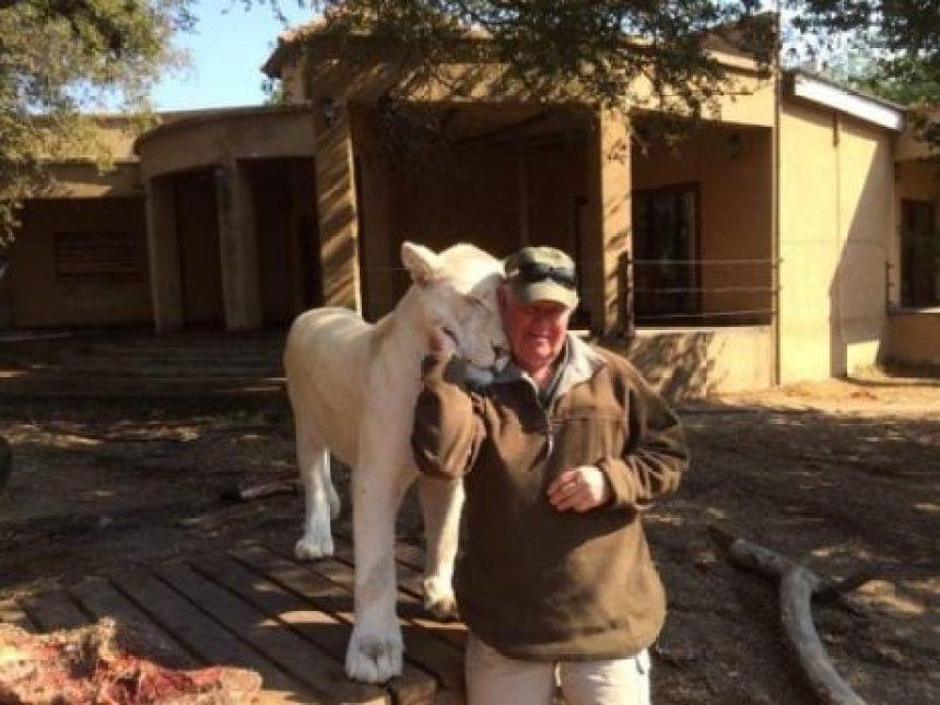 El activista West Mathewson, falleció tras ser atacado por una leona que había rescatado